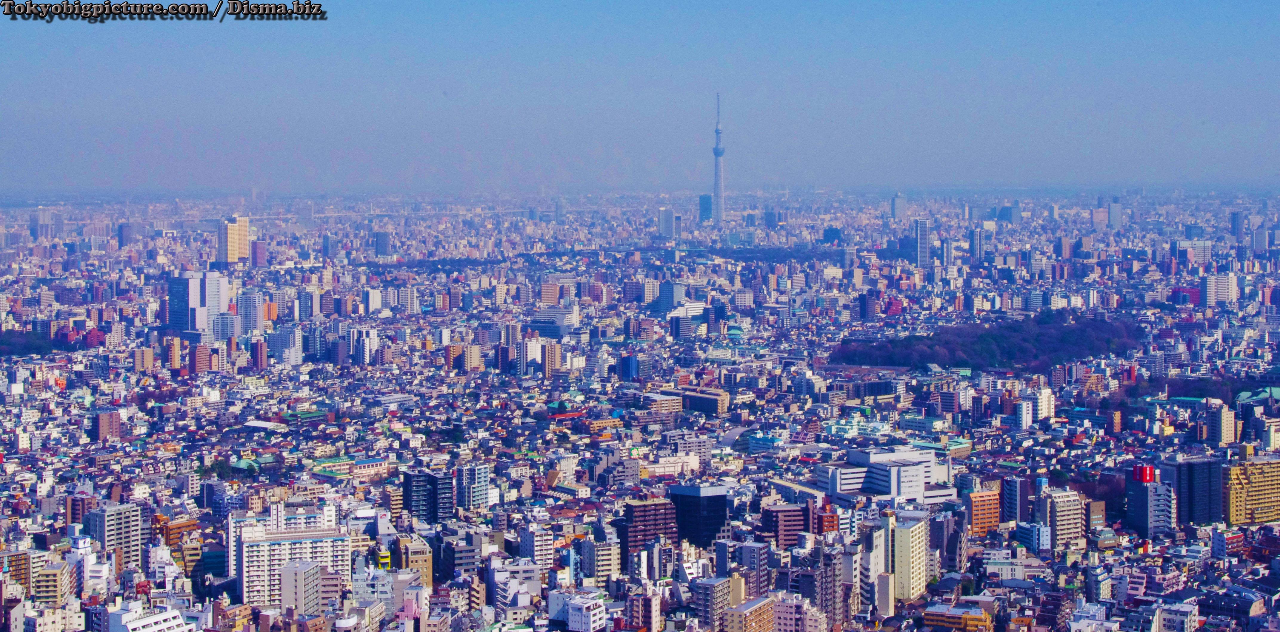 Ikebukuro Skyline Sunshine City Mejiro Amp Surroundings